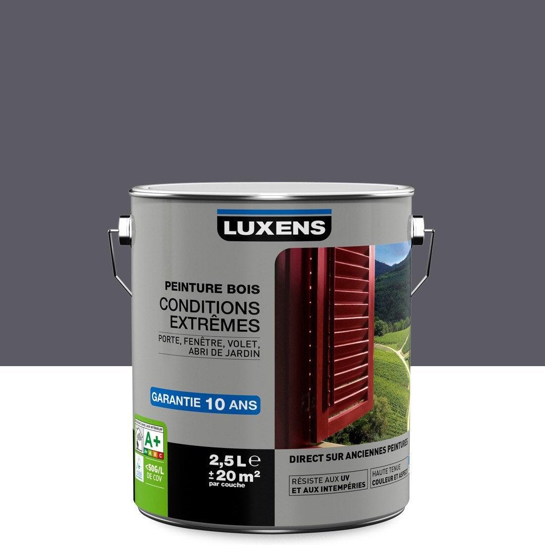 Captivant Peinture Bois Extérieur Conditions Extrêmes LUXENS, Gris Galet N°1, 2.5 L