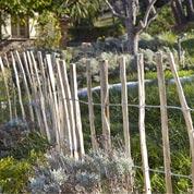 Clôture bois Sandy bois, H.100 x l.500 cm