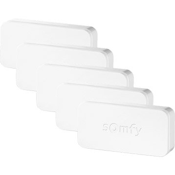 Pack 5 IntelliTAG   SOMFY protect