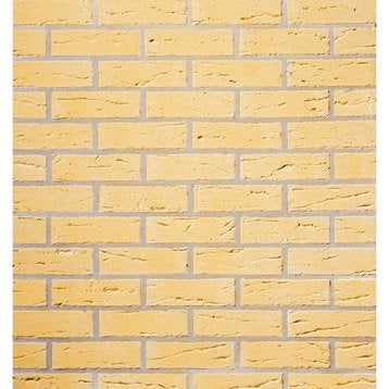 Brique perforée SaumurP.6.5 x L.22 x l.10.5 cm