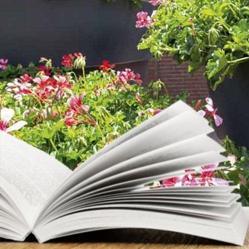 Livre terrasse et jardin