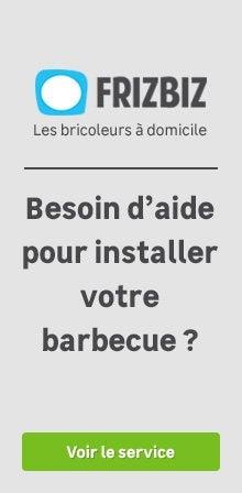 Frizbiz - Barbecue