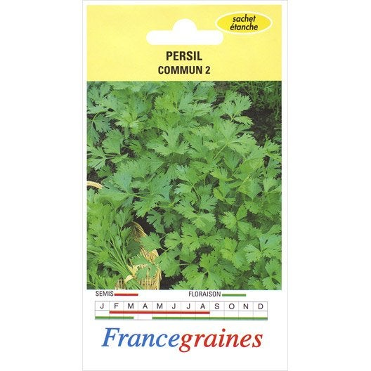 Persil patisson orange france graines 3 g leroy merlin for Entretien persil jardin