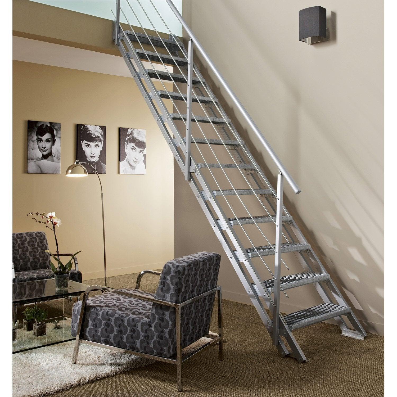rambarde tube escavario obapi avec main courante en acier galvanis leroy merlin. Black Bedroom Furniture Sets. Home Design Ideas