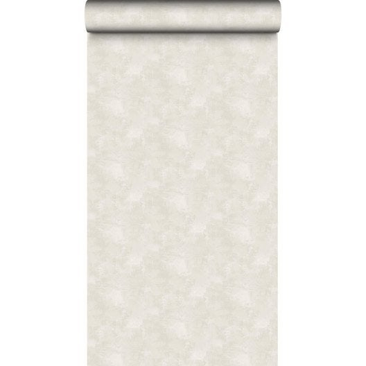 Papier peint vinyle intiss uni velours beige leroy merlin for Papier peint vinyle intisse