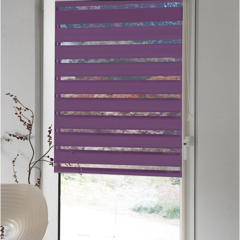 store enrouleur jour nuit standard inspire violet tulipe n 2 150 150 x 190cm leroy merlin. Black Bedroom Furniture Sets. Home Design Ideas