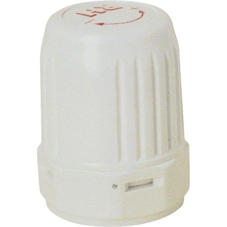 Tête De Robinet Thermostatique Droit Pvc Nickelé Ecopro