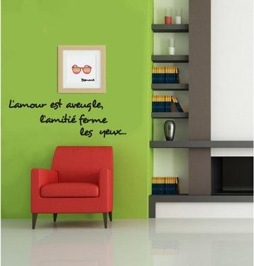 Stickers Muraux Fleurs Leroy Merlin Gamboahinestrosa