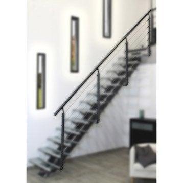 Rambarde d 39 escalier garde corps protection palier escalier leroy merlin - Garde corps escalier interieur leroy merlin ...