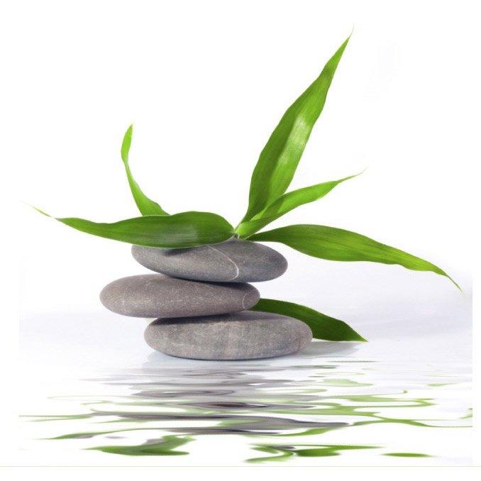 Façade Pour Applique à Composer E14 Zen Bamboo Verre Vert 0 Inspire