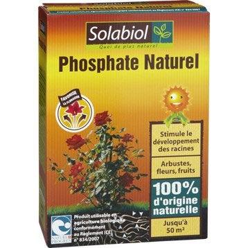 Phosphate de fond SOLABIOL 1,5kg 50 m²