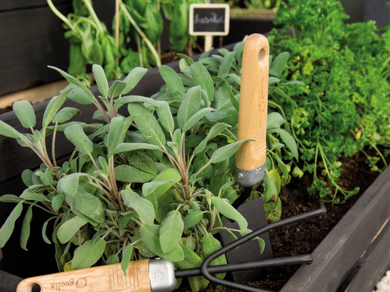 Les bons gestes pour jardiner écolo sans se planter