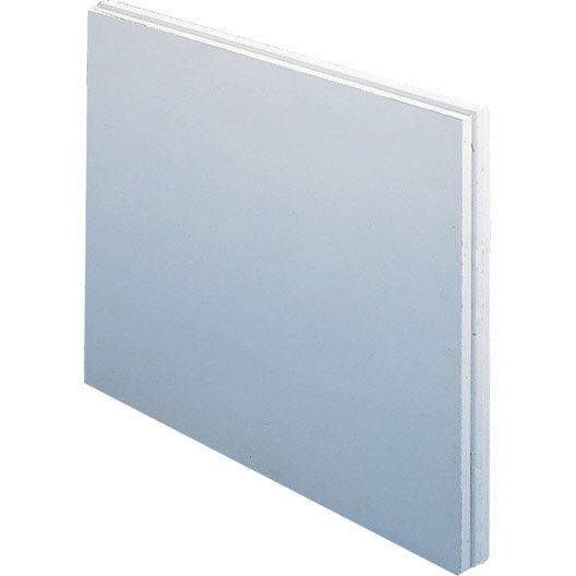 carreau de plâtre plein hydrofuge l.50 x l.66 x ep.10 cm | leroy ... - Carreau De Platre Salle De Bain