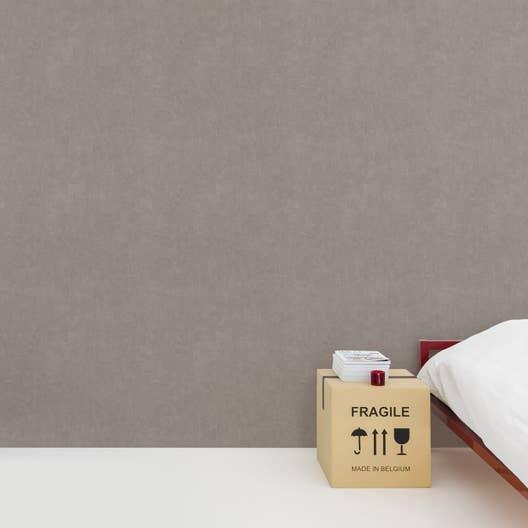 papier peint intiss beton mat taupe leroy merlin. Black Bedroom Furniture Sets. Home Design Ideas