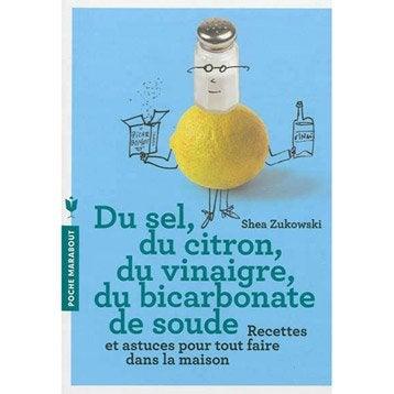 Du sel, du citron, du vinaigre, du bicarbonate de soude, Marabout