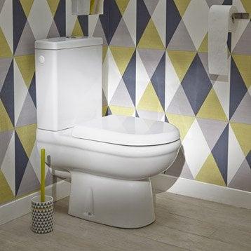 Wc poser wc abattant et lave mains toilette leroy merlin - Wc retro leroy merlin ...
