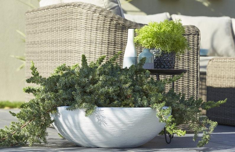 pot de fleur pour un effet fraicheur leroy merlin. Black Bedroom Furniture Sets. Home Design Ideas