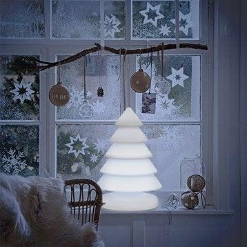 Eclairage d coratif ext rieur design leroy merlin - Sapin lumineux exterieur ...