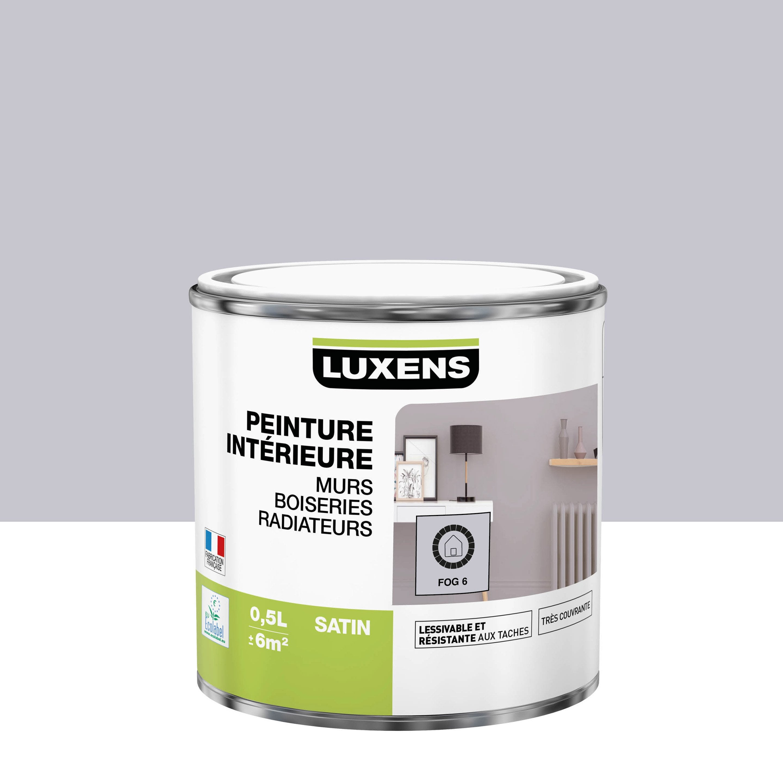 Peinture mur, boiserie, radiateur intérieur Multisupports LUXENS, fog 6, satin,