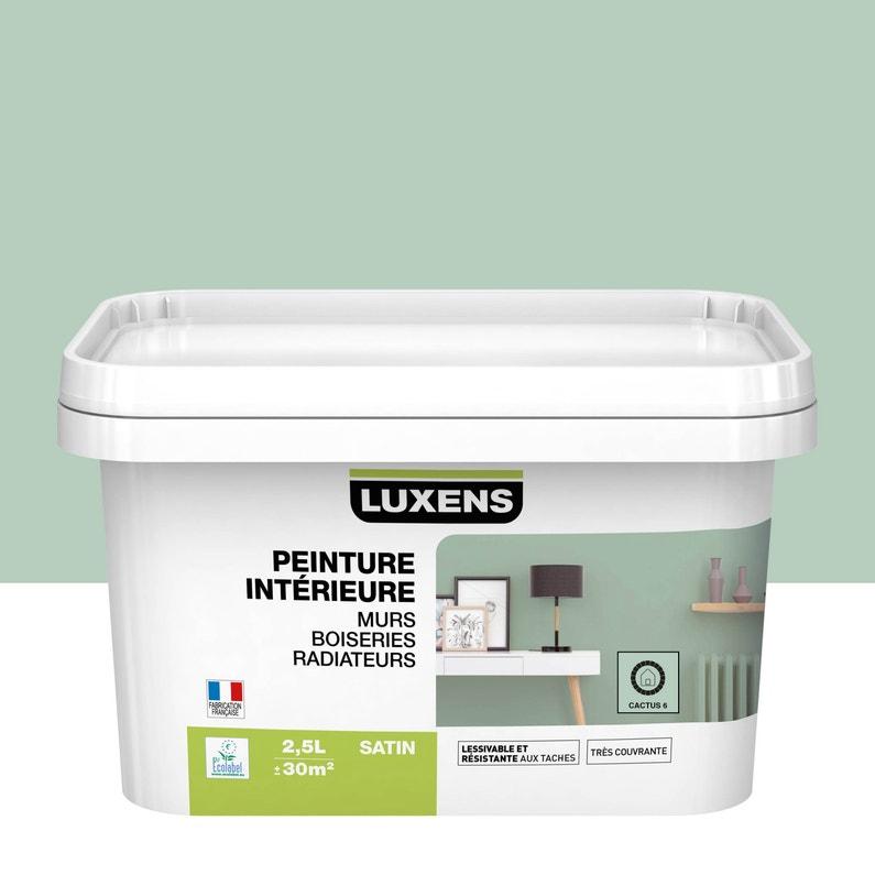 Peinture Mur Boiserie Radiateur Toutes Pieces Multisupports Luxens Cactus 6 Leroy Merlin