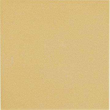 Carrelage sol et mur cognac effet uni Archi l.15 x L.15 cm