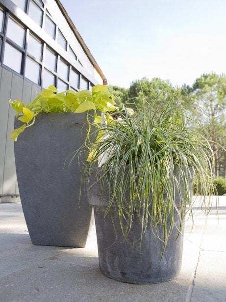 Des pots hauts en fibre aspect ciment design pour les plantes d'extérieur