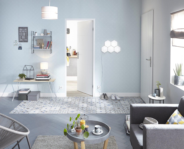 une entr e d limit e avec les carreaux de ciment leroy. Black Bedroom Furniture Sets. Home Design Ideas