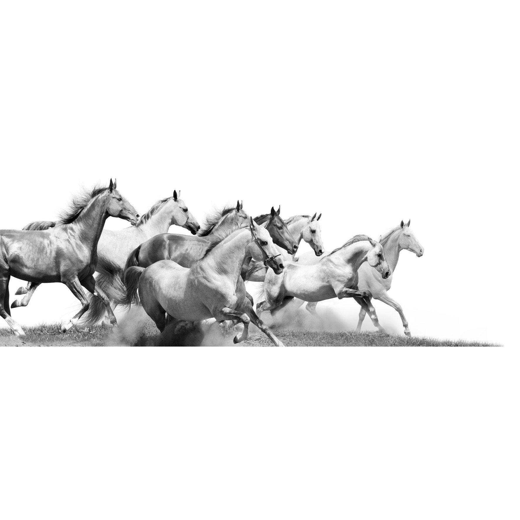 Verre imprimé EPOPEE SAUVAGE, blanc et gris ARTIS l.95.5 x H.30 cm