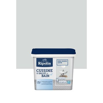 Peinture murale cuisine et bain peinture cuisine et bain for Peinture cuisine gris souris